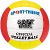Sport-Thieme® Beachvolleyball