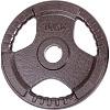 Sport-Thieme® Wettkampf-Guss-Hantelscheibe