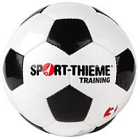 Sport-Thieme® Fussball