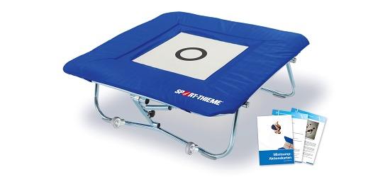 """Sport-Thieme® Minitramp """"Standard"""" Minitramp 112"""