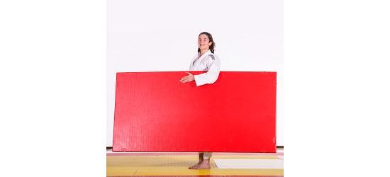 tapis de judo progame trocellen tis fr sport. Black Bedroom Furniture Sets. Home Design Ideas