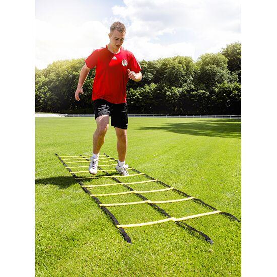 Échelle de coordination Sport-Thieme « Agility » 4 m, Échelle double