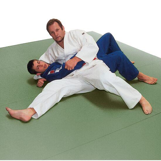 tapis de judo et universel peter seisenbacher fr sport. Black Bedroom Furniture Sets. Home Design Ideas