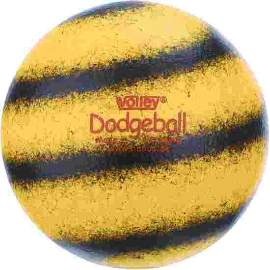 Ballon Volley Dodgeball