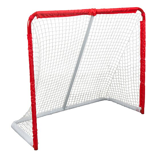 But de street-hockey Taille 1
