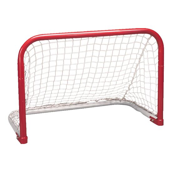 But de street-hockey Taille 2