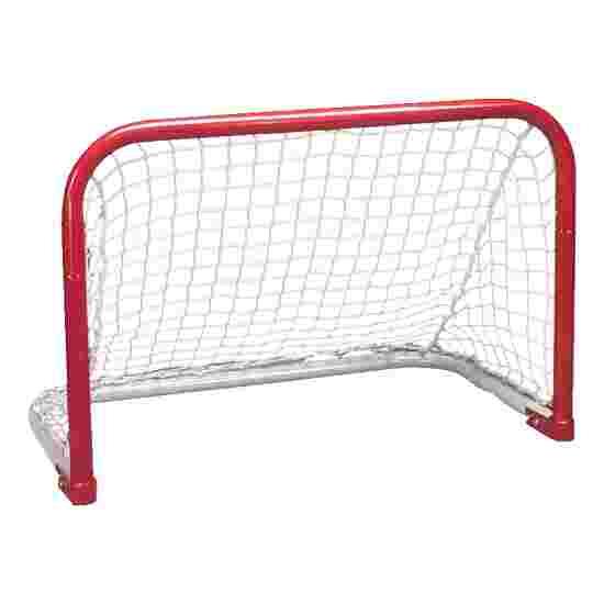 But de street-hockey Taille 2