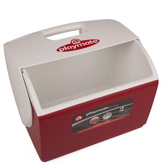 Igloo grosse Betreuer-Eisbox Ohne Inhalt