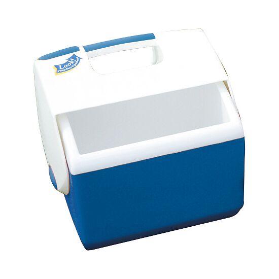 Kleine Betreuer-Eisbox