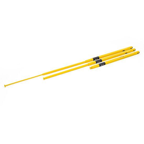Lot de poteaux SKLZ® Pro Training « Agility Pole »