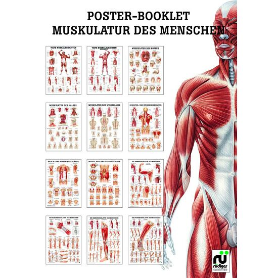 Miniposter-Booklet kaufen - Sport-Thieme.ch