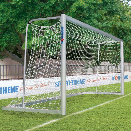 Sport-Thieme Jugendfussballtor-Set