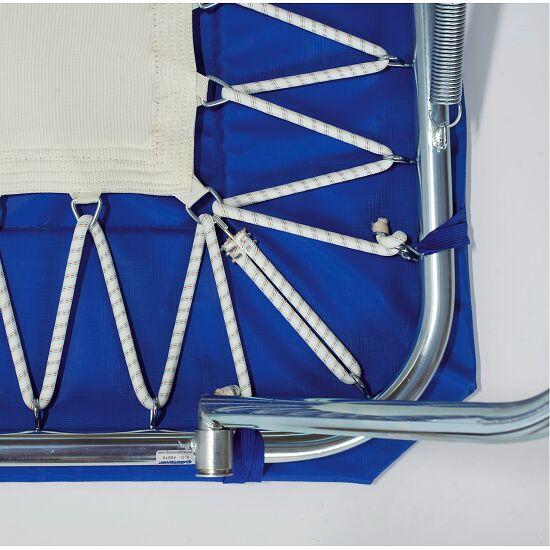 sport thieme minitramp standard mit integrierter sport. Black Bedroom Furniture Sets. Home Design Ideas