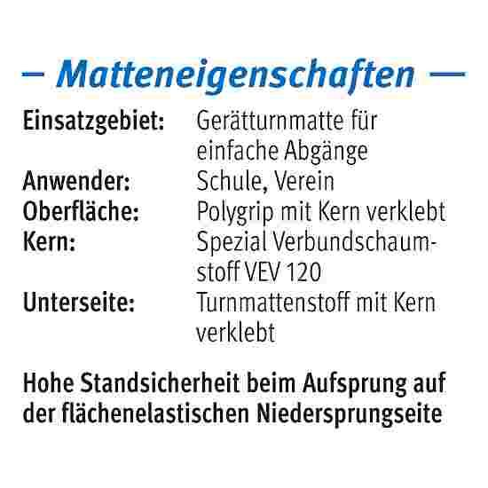 Sport-Thieme Tapis de sortie d'appareil « GTM 3000 » 200x100x6 cm, 17 kg, Bleu