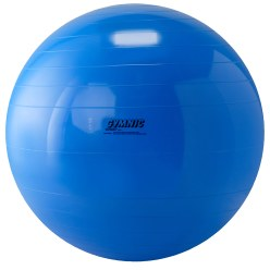 Gymnic® Gymnastikball ø 65 cm