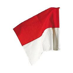 Sport-Thieme® Fahne für Grenzstange ø 50 mm Neongelb