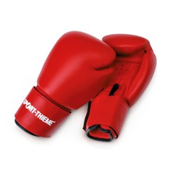 Gants de boxe Sport-Thieme « Workout »