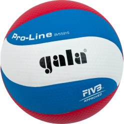 Gala® Volleyball