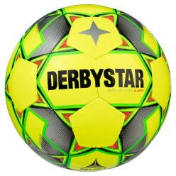 "Derbystar Futsalball  ""Basic Pro S-Light"""